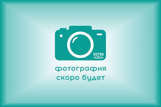 Видеомонитор медицинский EndoGlance HD 24.1